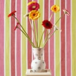 Bouquet of Gerberas in Front of Striped Wallpaper