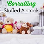 Corral the Stuffed Animals