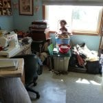 Who Hires a Professional Organizer?