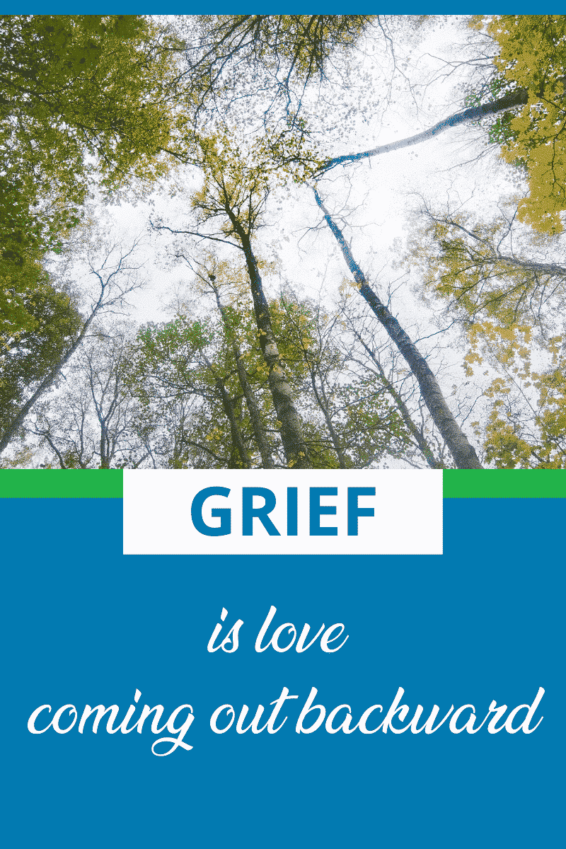 text states grief is love coming out backward, photo of sky with tree tops